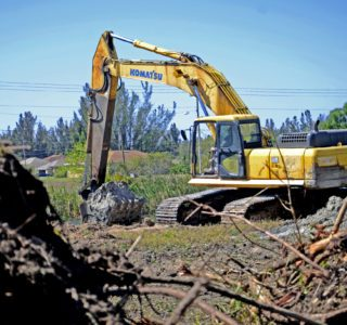 For a new construction home site, Bubba Williamson clearing trees and brush from the shoreline.